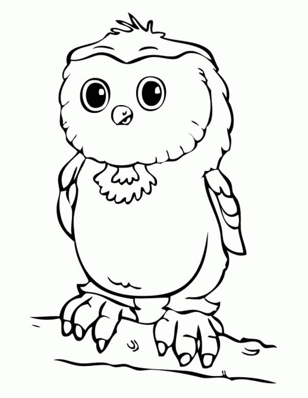 Baby Owl Coloring Page - Download & Print Online Coloring ...