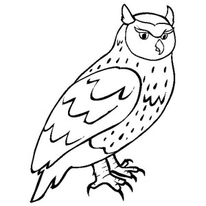 Beauty Horned Owl Coloring Page