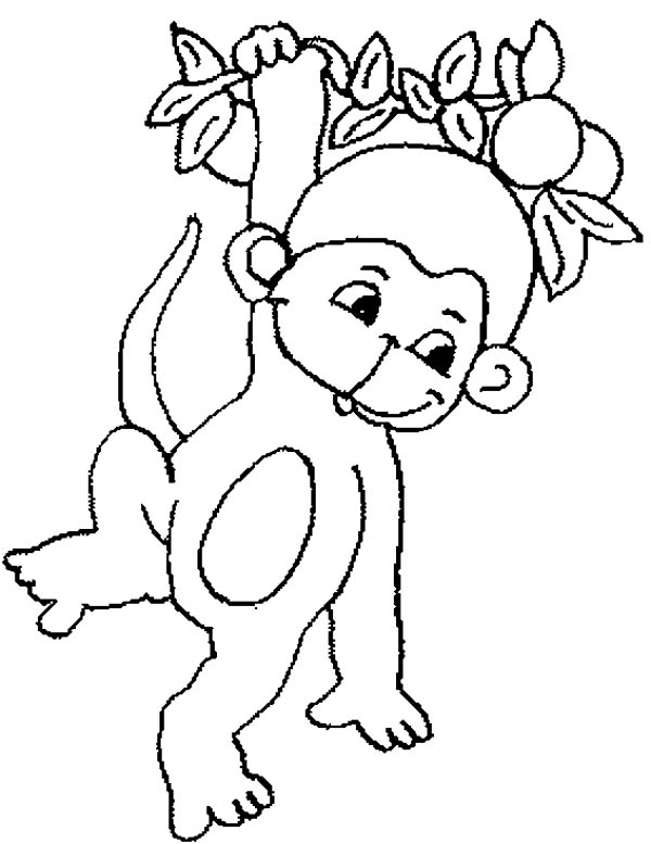 Cute Baby Monkey Hanging On Tree Coloring Page For Kids - Download ...