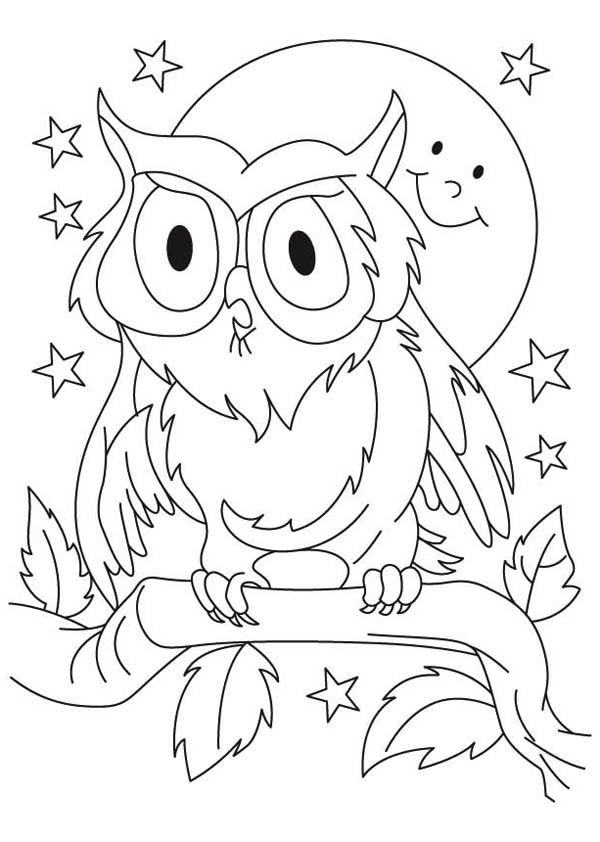Great Horned Owl For Kids Coloring