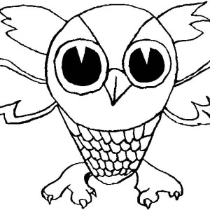 Little Owl Drawing And Coloring Coloring Page