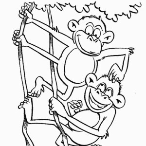 Monkey Brothers Play On A Tree Coloring Page