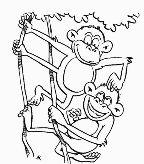Monkey Brothers Play On A Tree Coloring Page - Download ...