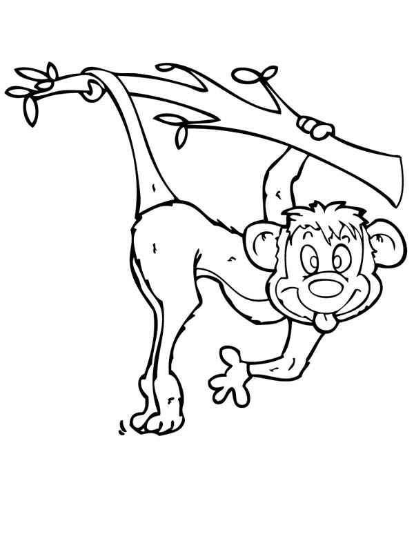 Monkey Make Funny Monkey Face Coloring Page - Download ...