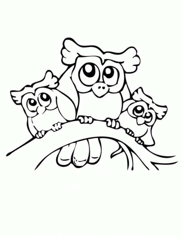 Owl Family Coloring Page Download Print Online Coloring Pages