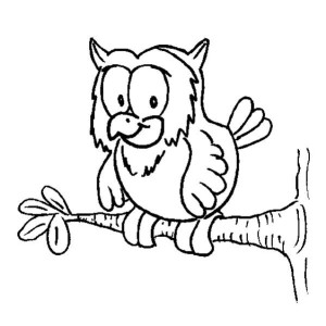 Owl On A Tree Branch Coloring Page