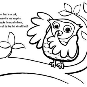 Owl Poet And Coloring For Kids Coloring Page