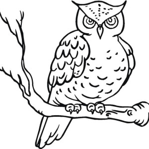 Owl Yawn Coloring Page