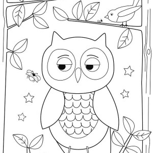 Simple Owl Drawing For Kids Coloring Page