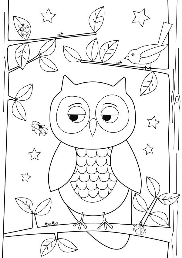 Simple Owl Drawing For Kids Coloring Page - Download ...