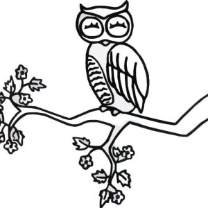 Sleeping Owl Coloring Page