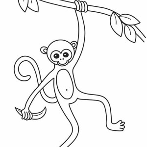 Slim Monkey Coloring Page