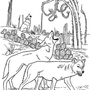 A Group Of Wolf Marking Their Territory Coloring Page