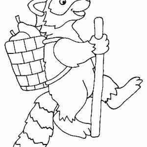 Adventure Of Raccoon Coloring Page