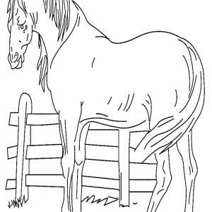 An Old Horse In Horses Coloring Page