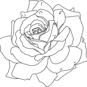 Awesome Rose Picture Coloring Page