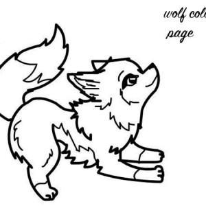 Baby Wolf Coloring Page