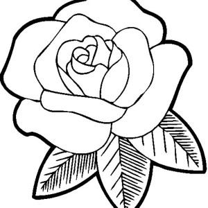 Big Beautiful Rose Coloring Page