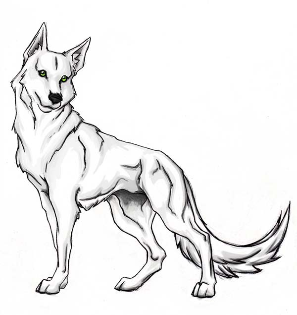 This is an image of Printable Wolf Coloring Pages for wolf pup