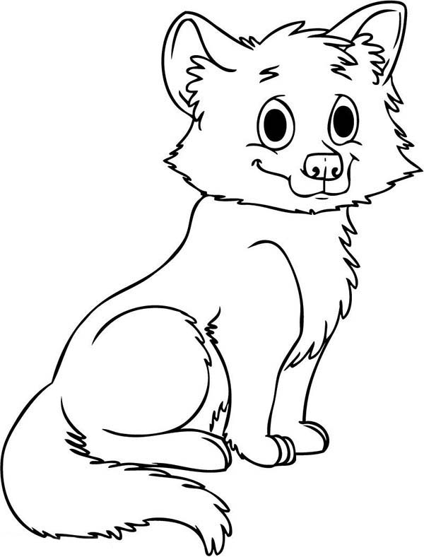 Cute Baby Wolf Coloring Page Download Amp Print Online