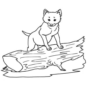 Cute Little Wolf Coloring Page