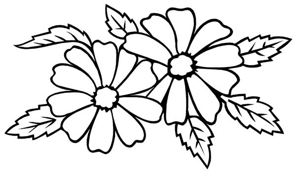 Flower For Wedding Party Coloring Page Download Amp Print