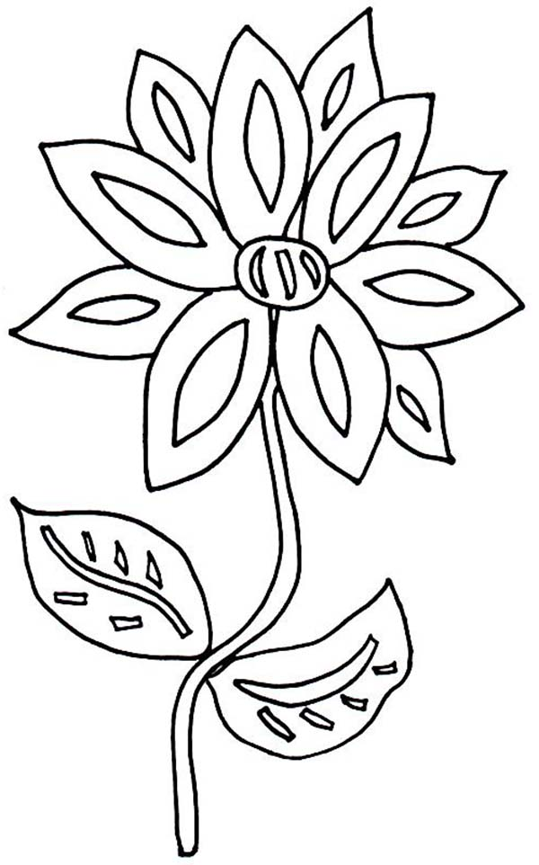 flower in the front yard coloring page