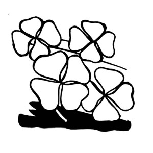 Four Leaf Clovers Decoration For St Patricks Day Coloring Page