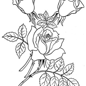 Garden Of Rose Coloring Page