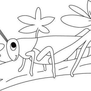 Grasshopper Walking Coloring Page