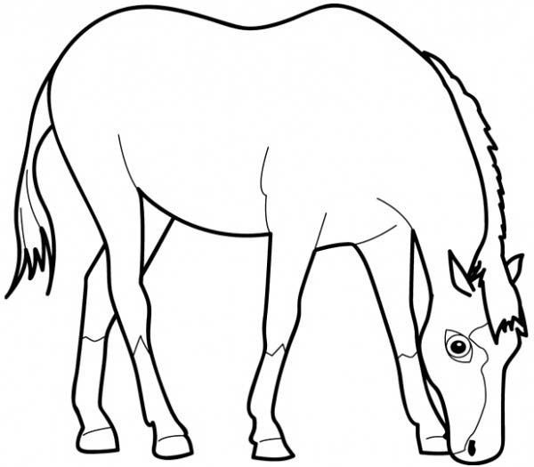 Horse Eating Grass In Horses Coloring Page - Download ...