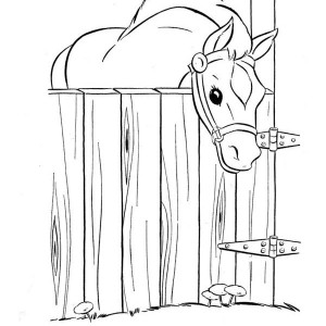 Horse In The Stable In Horses Coloring Page