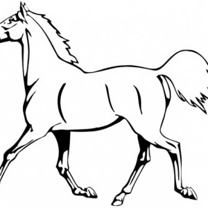 Horse Is Running In Horses Coloring Page
