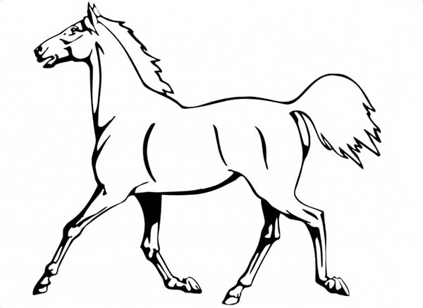 Horse Is Running In Horses Coloring Page Download Print Online Rhcolornimbus: Elsa Horse Coloring Pages At Baymontmadison.com
