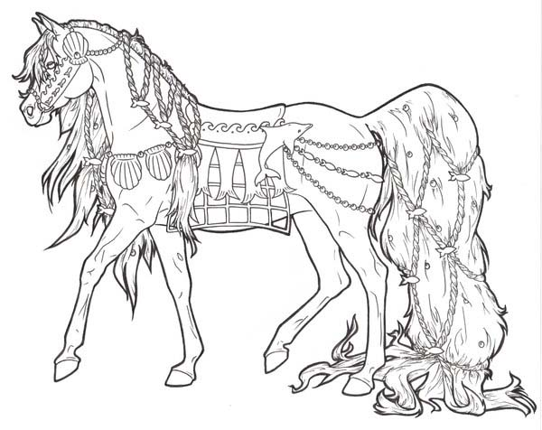 Horse With Long Ponytail In Horses Coloring Page ...