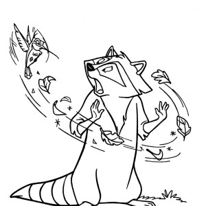 Raccoon And Humming Bird Coloring Page