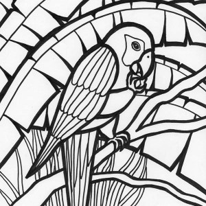 Rainforest Parrot Coloring Page