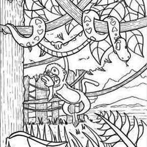 Rainforest Snake And Monkey Coloring Page