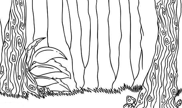 Rainforest Trees Coloring Page