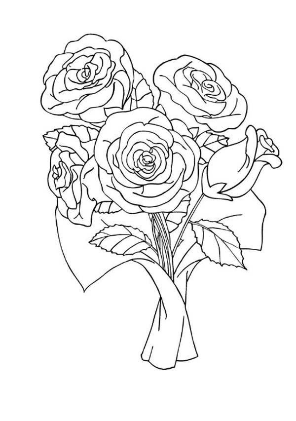 Red Rose Coloring Page Download Print Online Coloring Pages For