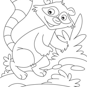 Rocky The Raccoon Coloring Page