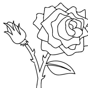Rose For You Coloring Page