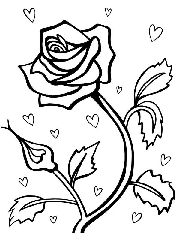 Rose For Valentine Day Coloring Page - Download & Print ...