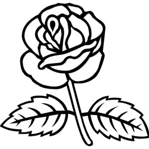 Rose With Two Leaves Coloring Page