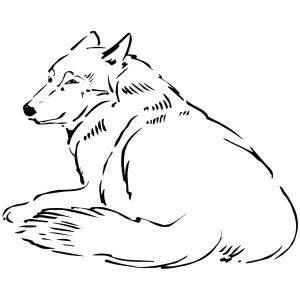 Sleepy Wolf Coloring Page