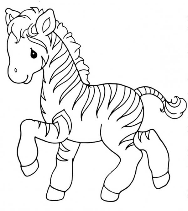 Sweet Little Zebra Coloring Page Download Print Online Coloring