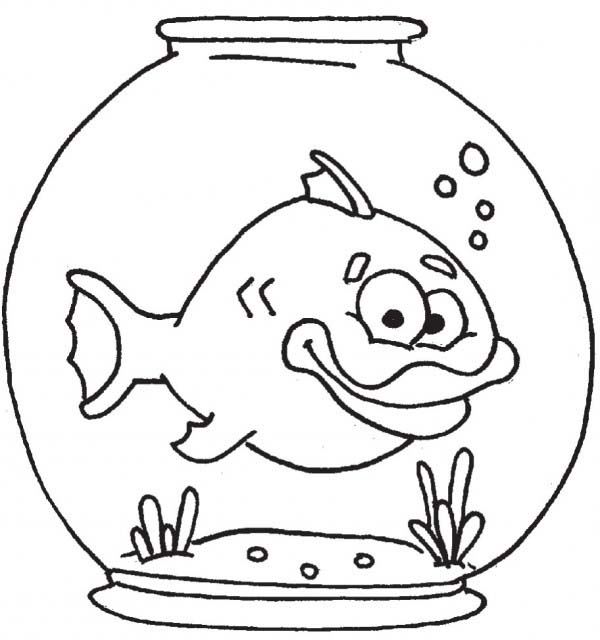 thick lip fish in fish bowl coloring page download print online coloring pages for free color nimbus thick lip fish in fish bowl coloring