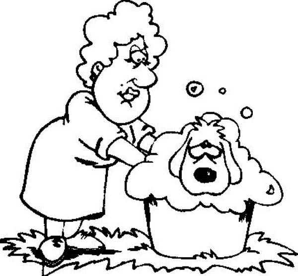 This Dog Is Hate To Take A Bath Coloring Page - Download & Print ...