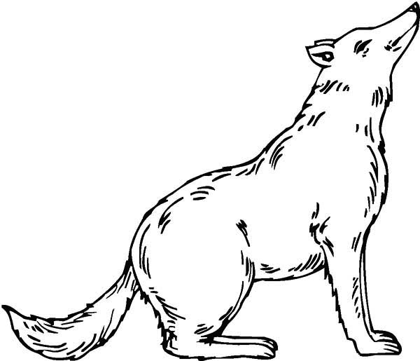 christmas wolf coloring pages | Cute Wolf Coloring Page - Download & Print Online Coloring ...