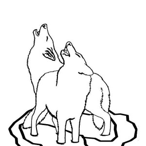 Wolf Couple Howling Together Coloring Page